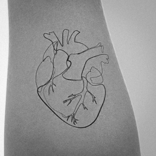 simple anatomical heart tattoo one line idea